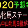 福島牝馬ステークス2020競馬予想|本命リュヌルージュで勝負!