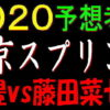 東京スプリント2020予想(大井競馬)|武豊vs藤田菜七子