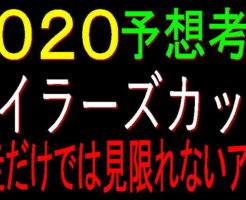 マイラーズC2020キャッチ