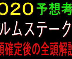 エルムS2020キャッチ2