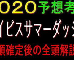 アイビスSD2020キャッチ2