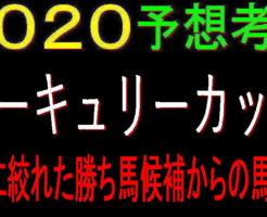 マーキュリーC2020キャッチ