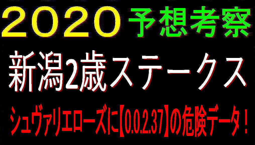 新潟2歳S2020キャッチ