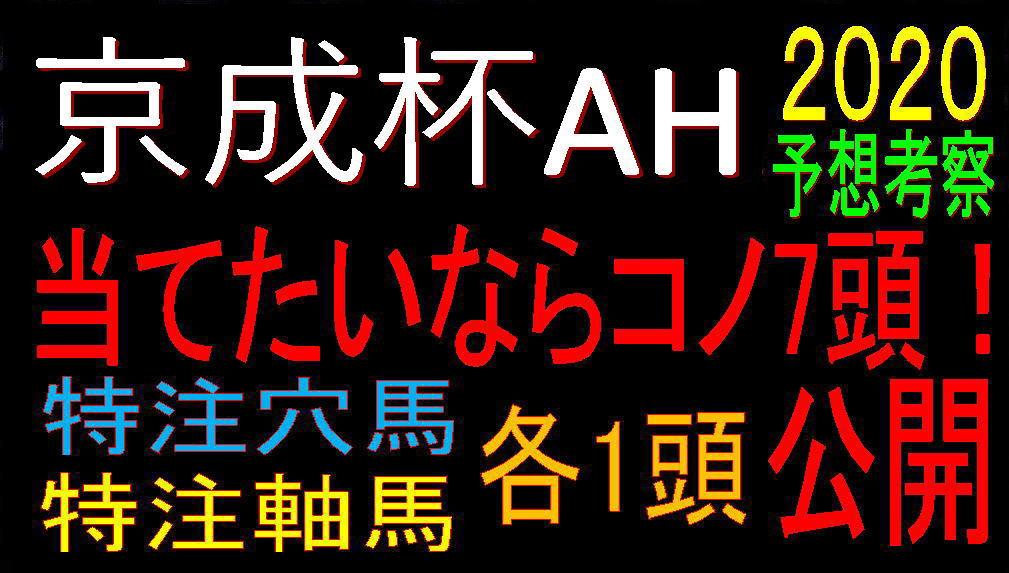 京成杯AH2020キャッチ