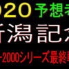 新潟記念2020競馬予想|コース適性ならアノ穴馬!