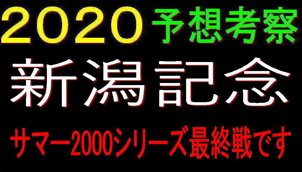 新潟記念2020キャッチ