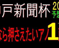 神戸新聞杯2020キャッチ