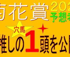 菊花賞2020キャッチ