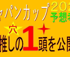 ジャパンカップ2020キャッチ
