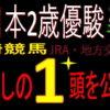 全日本2歳優駿2020(川崎競馬)消去法予想|過去3年【1.0.2.3】アノ地方馬が好データ!?
