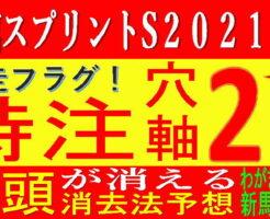 函館SS2021キャッチ