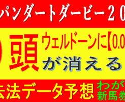 ジャパンダートダービー2021キャッチ